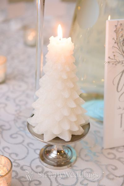 An Elegant Silver Winter Wedding