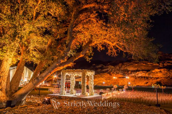 Glamorous Wedding at Hummingbird Nest Ranch