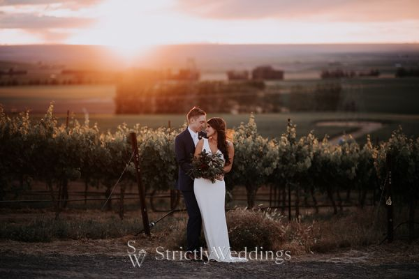 Sophisticated Washington Winery Wedding